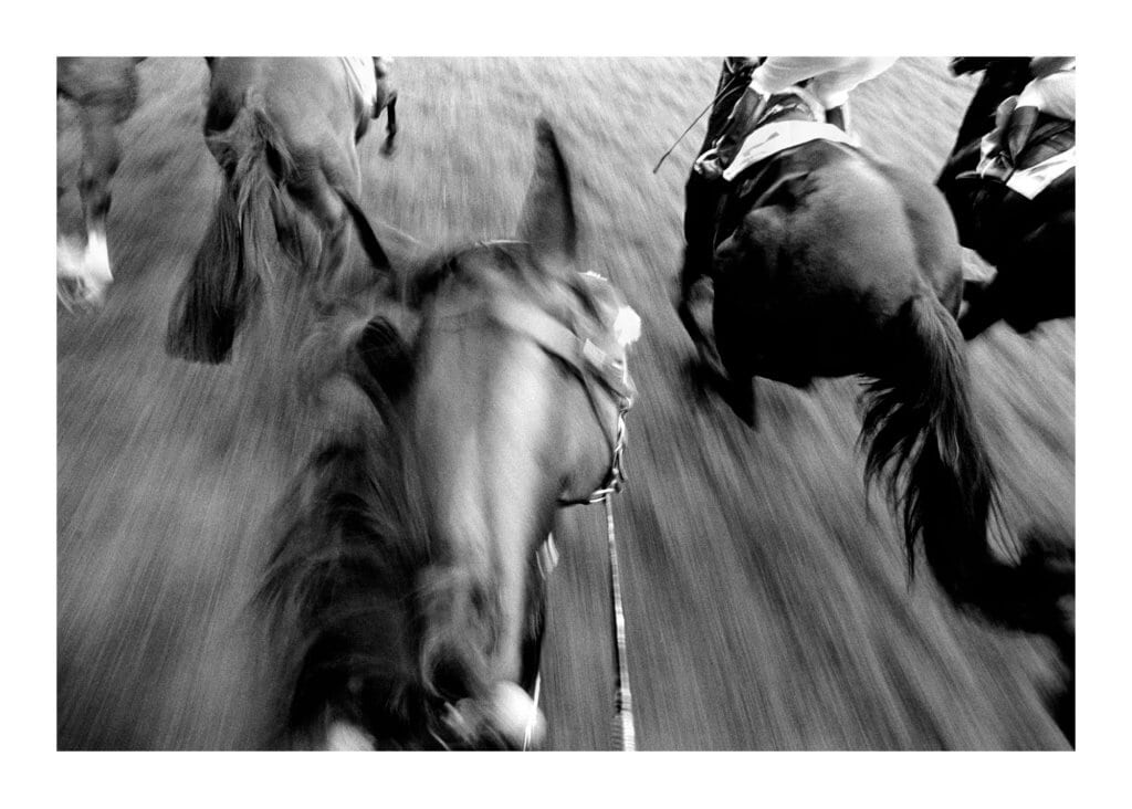 Peter Ginter Photography - FineArt-Print - The Chase - Germany Black and White